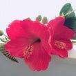 帽子の様な花飾り