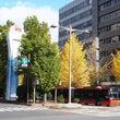 秋の群馬&新潟紅葉旅…