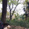 東大阪の枚岡公園へ☆