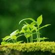 自己成長を考えるⅤ