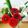 一輪の花を愛でる