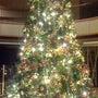 山形クリスマスツリー