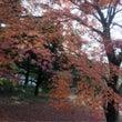 ギリギリセーフ、秋。