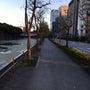今朝の皇居、東京ドー…