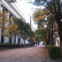 有楽町駅~東京駅 お…