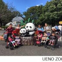 *お友達と動物園へ*