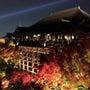 秋の京都〜ライトアッ…