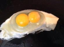 8回目の二黄卵