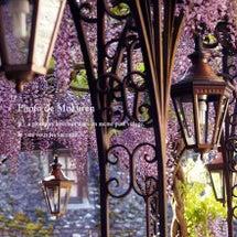 *「フランス花の村を…