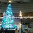 クリスマス雑貨とオー…