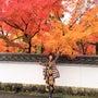 秋の京都〜芸術は爆発…
