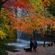 新潟 加茂山公園 紅…