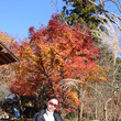 【週末デート】 嵐山…