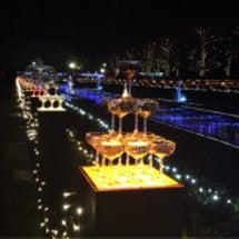 昭和記念公園クリスマ…