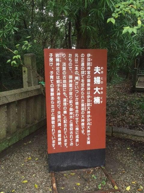 スタジオジブリ|STUDIO GHIBLI - 5/25更新 WEB ...