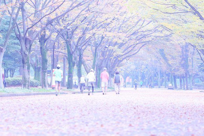 駒沢公園。フレブルパン。