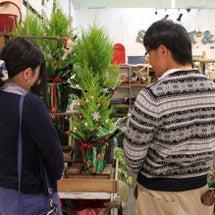 クリスマスツリーを作…