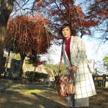 初冬の姫路城