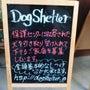 Dog Shelte…