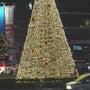 吉祥寺のクリスマスツ…