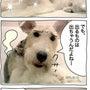 ★4コマ漫画「アイル…