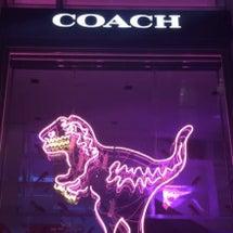 coach/表参道