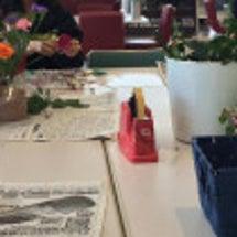花セラピーイベントと…