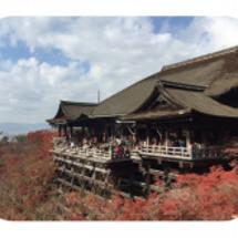 京都にウォーキングに…