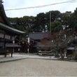 今宮神社 月参りの一…