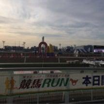 ぐまモン⁈大井競馬場…