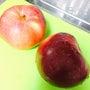 りんごー♡