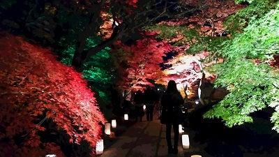 20161113松島円通院足元灯りb