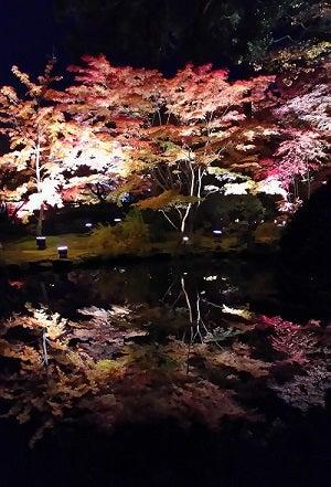 20161113松島円通院紅葉と逆さ紅葉b