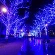 【青の洞窟】クリスマ…