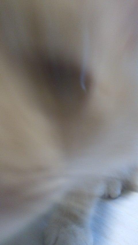161204_152822.jpg