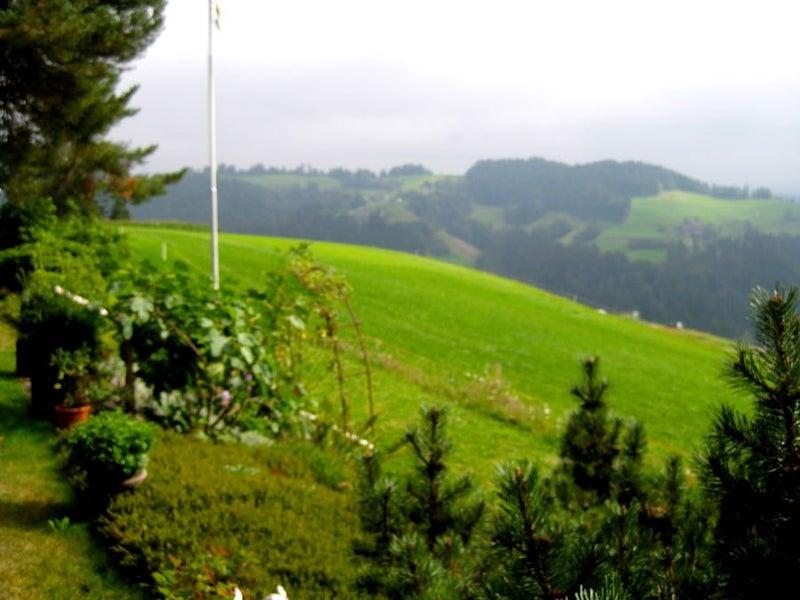 2016 Gohl-Langnau 10