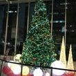 12月 クリスマスモ…