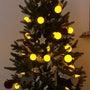クリスマスツリー☆彡
