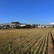 神奈川県の紅葉と富士…