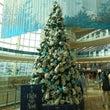 羽田空港のクリスマス…