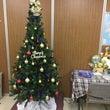 今年もクリスマスツリ…