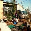 雑木の庭造りで町の風…