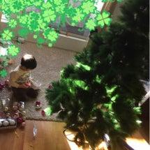 クリスマスツリー♪♪