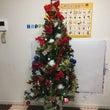 クリスマスツリーの飾…
