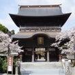 【阿蘇神社参拝】復興…