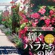 輝くバラたちの庭写真…