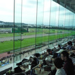 菊花賞で東京競馬場へ…