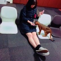 麗奈と猫カフェ〜!田…
