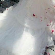 ボーナス&結婚式や旅…