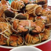 上海蟹ツアー